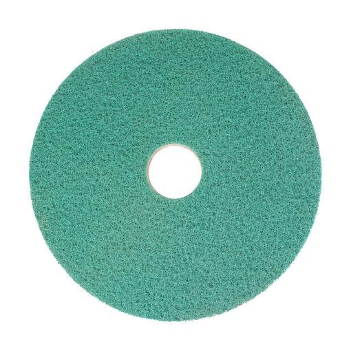 """Afbeelding van Bright n Water Cleaning Pad 17""""/43,2 cm Groen 2 stuks"""